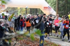 Start zum 2. Trail Relay (So. 3.11.2013)